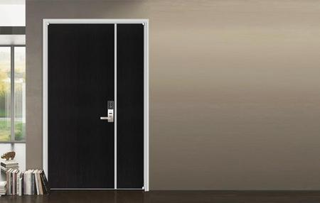 ECOTYPE DOOR  SERIES 06