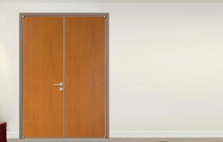 ECOTYPE DOOR  SERIES 08